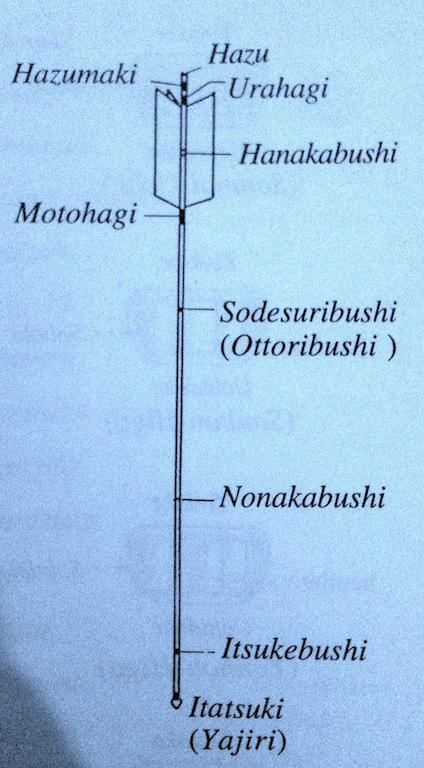nomenclatura-freccia